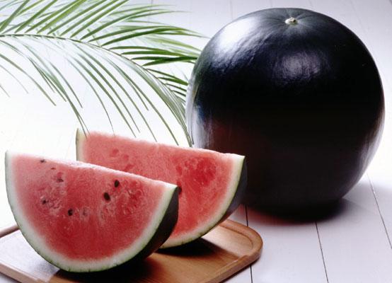 Densuke-Black-Watermelon