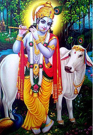 See Krishna