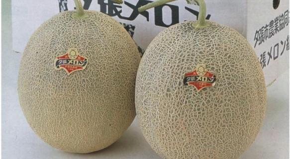 Yubari-King-Melons