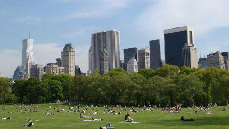 new-york-park