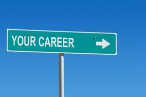 Best Career Options