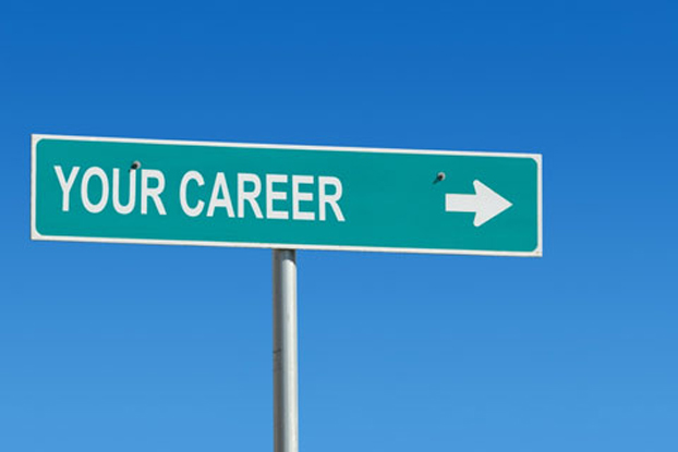 Which is the best career option after b com