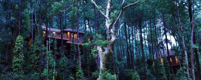 The Tamara Resort Coorg