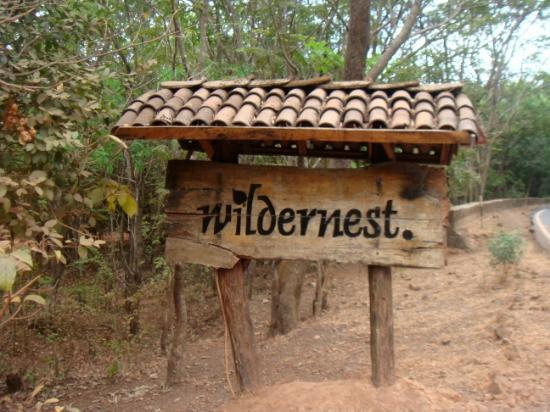 Wildernest Resort, Goa
