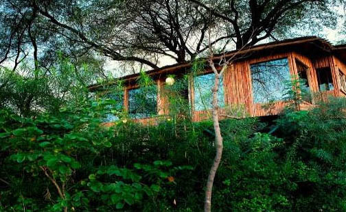Tree House Resort Jaipur