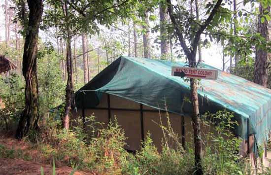 Camp Potter's Hill, Shimla, Himachal Pradesh