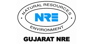Gujarat NRE Coke Ltd.