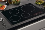 Best Induction cookers in India