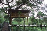 Tree House Hotels in India