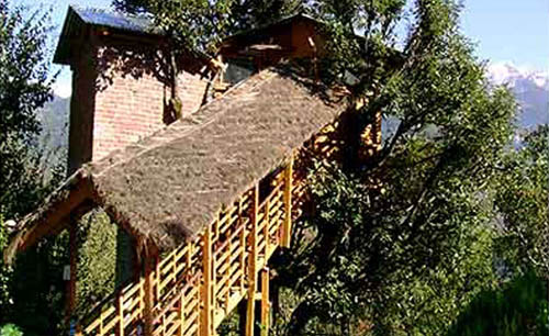 Manali Tree House Cottages, Himachal Pradesh