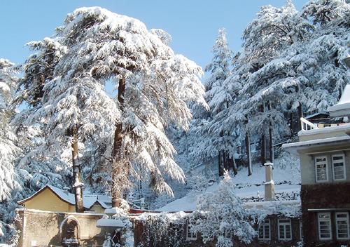 Shimla Winter Holiday Destination