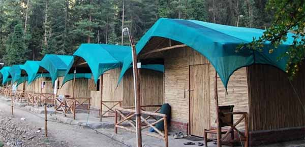 Camp Mashobra Greens in Shimla