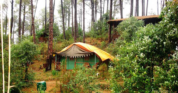 Camp Potters Hill in Shimla